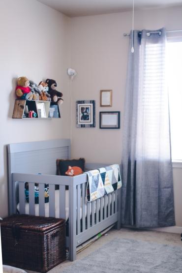 finleys-nursery-40-weeks-1-of-23